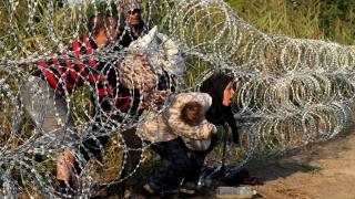 Expulzarea migranţilor sau Cum să arunci pisica LEGAL peste gardul vecinului