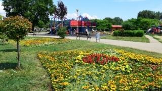 30.000 de flori înfrumusețează Țara Piticilor din Parcul Tăbăcărie