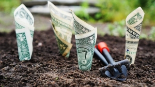 Statul înființează un fond-mamut de investiții
