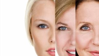 Funcţiile unei proteine ar putea ajuta la evitarea deteriorării celulare şi la întârzierea îmbătrânirii