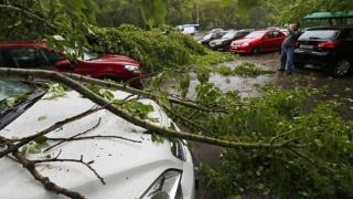 Acoperiş căzut peste trei maşini! Peste 50 de copaci, doborâţi de vijelie în ultimele ore