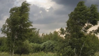 Averitzare meteo imediată: Cod portocaliu de furtuni pentru Constanța și zona Litoralului