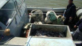Braconieri ucraineni prinși cu sute de kilograme de calcan
