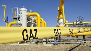 Gaze: importul creşte, producţia scade