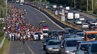 Germania, atenţionată privind comportamentul în privinţa migranţilor! Ne-ar putea afecta pe toţi!