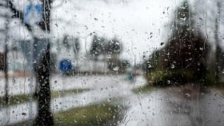 GOD GALBEN. Vin ploile în Dobrogea!