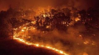 Alertă MAI pentru turişti! Risc ridicat de incendii în Grecia!