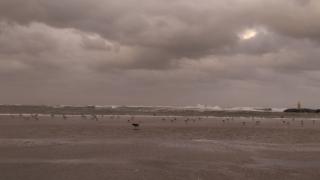 O nouă atenționare de vreme rea. Ploi, vânt puternic și inundații