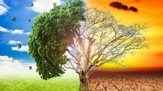 În 200 de ani, omenirea a anulat 3.000.000 de ani de răcire a climei!