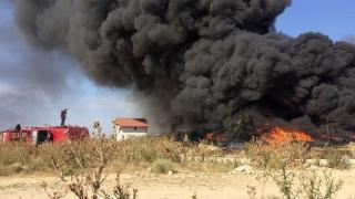 Incendiu devastator în Lumina! Pericol de explozie!