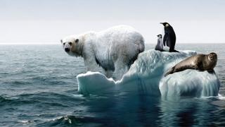 Presiune pentru reducerea emisiilor! Încălzirea globală, certitudine