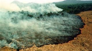 Numărul incendiilor din Brazilia aproape s-a dublat, în 2019