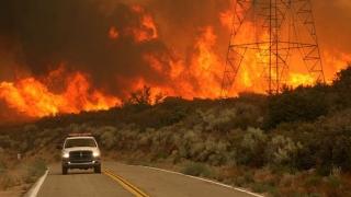 Ard pădurile, în California! Mii de persoane, evacuate