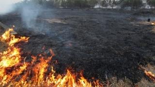 64.000 de hectare de terenuri, mistuite de incendii, în Spania