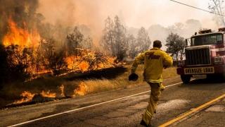 Incendiile din California, extinse spre pădurile din sudul ţării