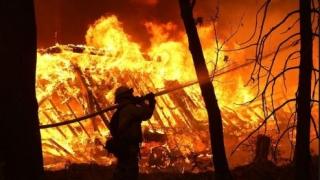 Incendiu violent la Tulcea. Un bărbat a decedat
