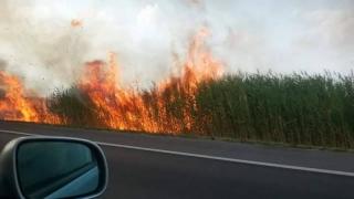 Coadă de 5 km pe autostradă, din cauza unui incendiu