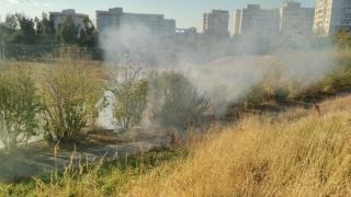Incendiu de vegetație pe stadionul Badea Cârțan
