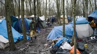 Un incendiu a distrus o tabără de refugiați din Franța