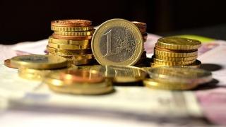 4,8 lei/euro, până vara viitoare?