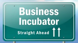 Proiectul de lege privind incubatoarele și acceleratoarele de afaceri, aprobat de Guvern