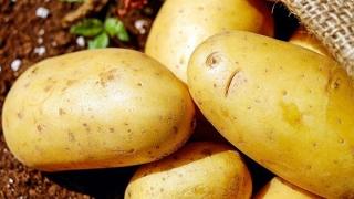Cartofii s-au scumpit cu 21%, în două luni