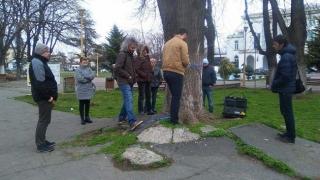 """Tomograf"" pentru copaci, la Constanța"