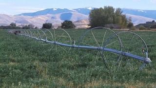Sisteme de irigații pentru două milioane de hectare, realizate până în 2020