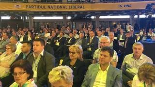 Consiliul Național de Coordonare al PNL își alege funcțiile de conducere