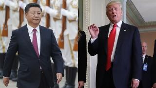 Nepoţii lui Donald Trump au cântat în limba chineză cu ocazia vizitei preşedintelui Xi Jinping