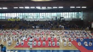 Medalii pentru CS Karate Tradiţional Eforie la CN şi Cupa Regelui
