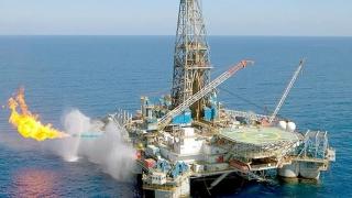 Legea offshore le dă cu rest petroliștilor