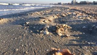 Dezolant! Este litoralul românesc pregătit pentru noul sezon estival?