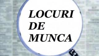 Sute locuri de muncă pentru români în Spaţiul Economic European