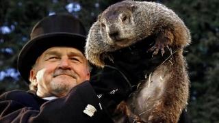 Marmota Phil anunţă şase săptămâni de iarnă