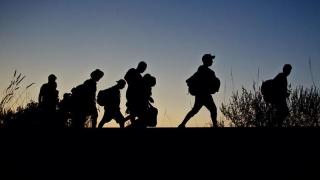 """Matteo Salvini: """"Italia nu se poate transforma într-o tabără de refugiați"""""""