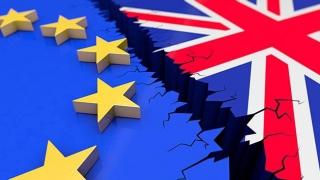 """M. Britanie trebuie să părăsească """"total"""" uniunea vamală europeană"""