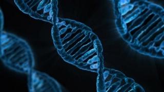 Oamenii de știință vor secvenția ADN-ul în spațiu