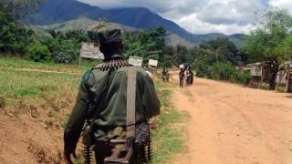 Patru milioane de oameni strămutați în Congo