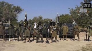 Sute de combatanţi ai Boko Haram, ucişi în acţiuni militare
