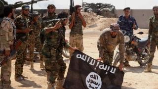 Pentagonul a publicat fotografii cu abuzuri ale militarilor americani în Irak și Afganistan