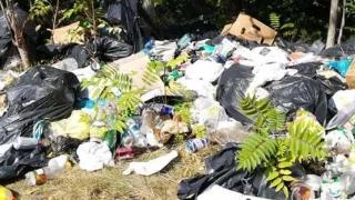 Ministrul Mediului, luat la întrebări pe tema poluării din Constanța