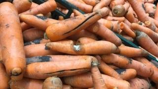 Fructe şi legume cu mucegai, la vânzare în marile supermarket-uri