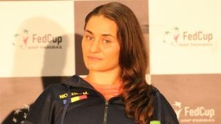 Niculescu a pierdut în turul secund la Wimbledon