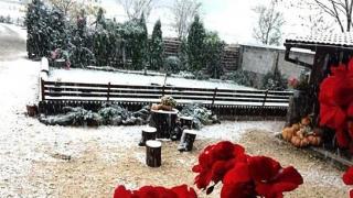 Ninge în aproape toată ţara. Temperaturile vor scădea sub limita de îngheţ