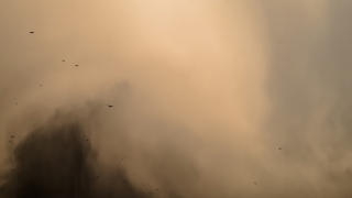 Norul de praf saharian a ajuns în România