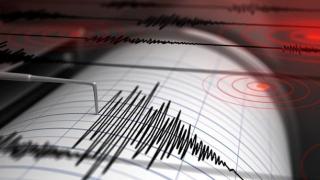 Cutremur de 4.7 magnitudine, în Japonia