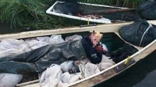 Nu mai are balta pește?! Unde s-au dus sutele de kile de pește din lacul Dranov