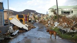 Număr imens de morţi în urma uraganului Maria: 2.975 de persoane!