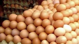 Contaminare gravă! Mii de ouă retrase de la comercializare